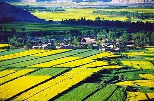 万博体育max手机注册首个国家现代农业产业园获认定
